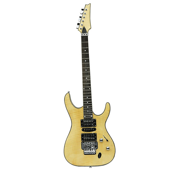 Electric Guitar RFG-205
