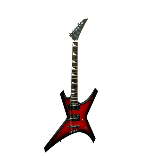 Electric Guitar RFG-313